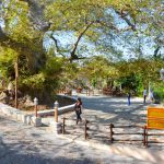 Old Plane Trees and Fountains at Krasi village