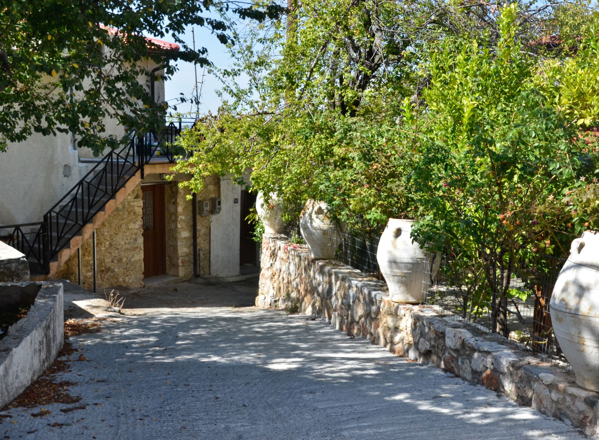 Κράσι Χερσονήσου, πλατάνια παραδοσιακό χωριό